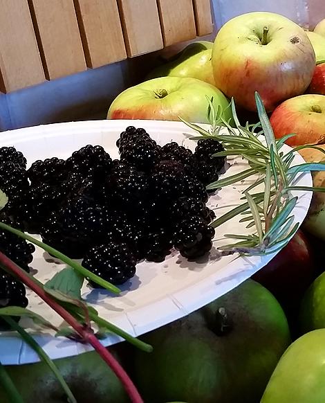 Lär känna våra äppelsorter