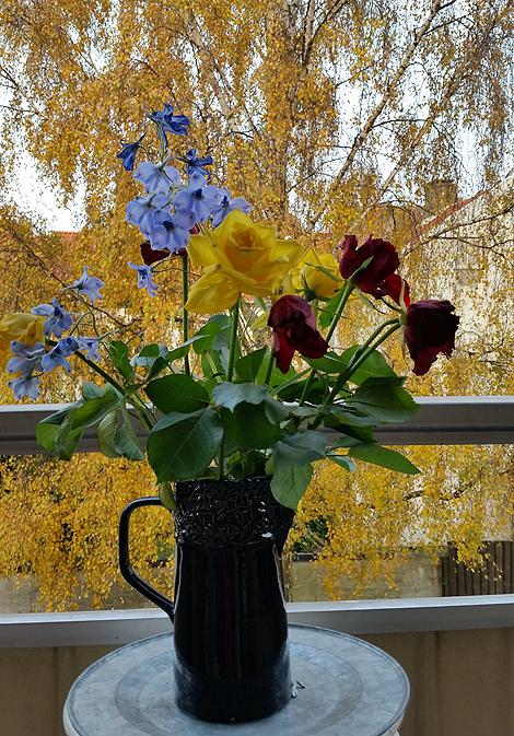 "Novemberutsikt från min balkong. Foto: Geula "" Viola "" Lesén"