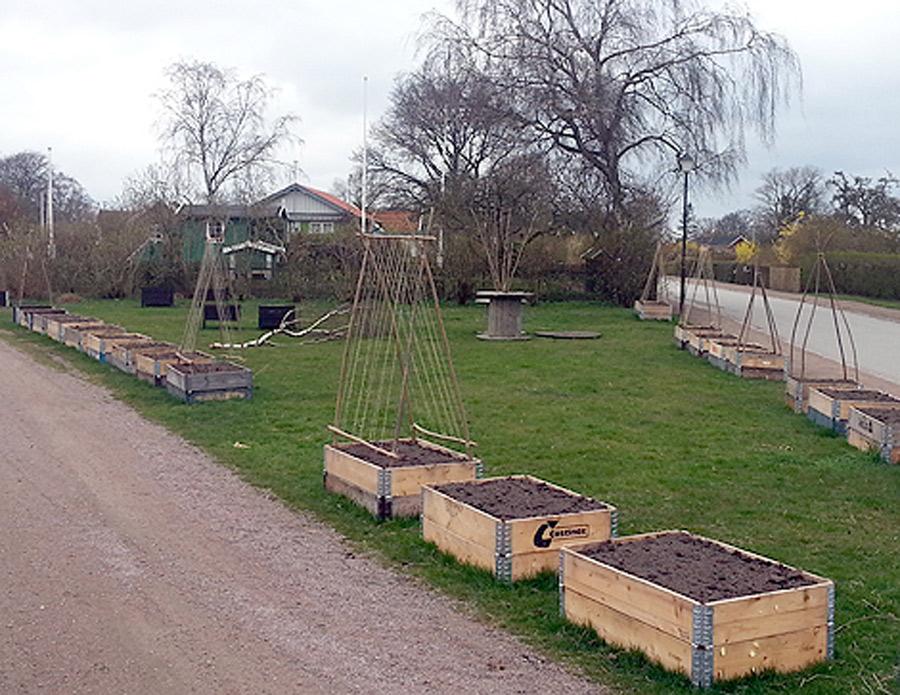 Framåt vårkanten är det meningen att odlingslådor ska placeras ut runt om i staden. Är du sugen på att sköta om en?