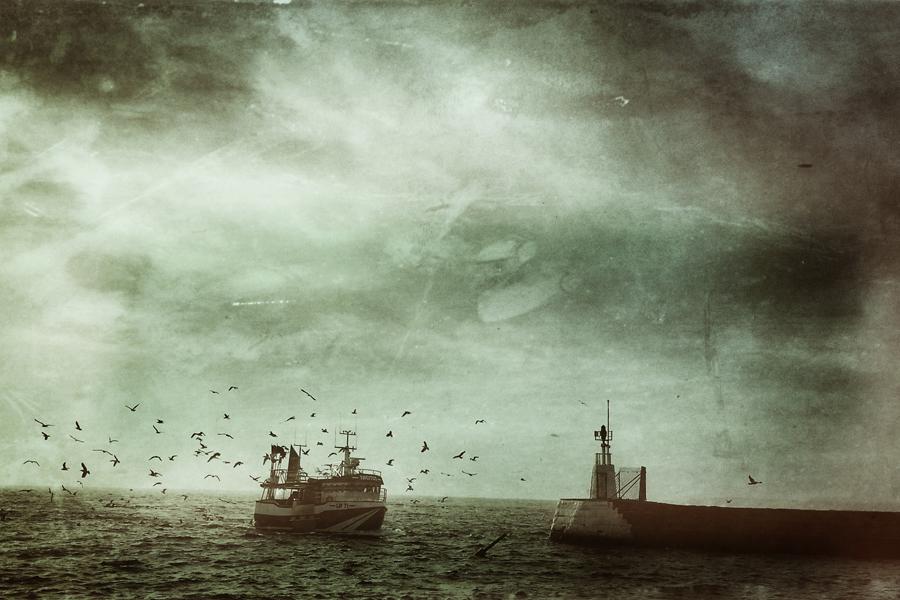 Byalaget Gamla Borstahusen vill se att hamnen rustas upp och anpassas för fiske och nöjesbåtar i befintlig hamn.