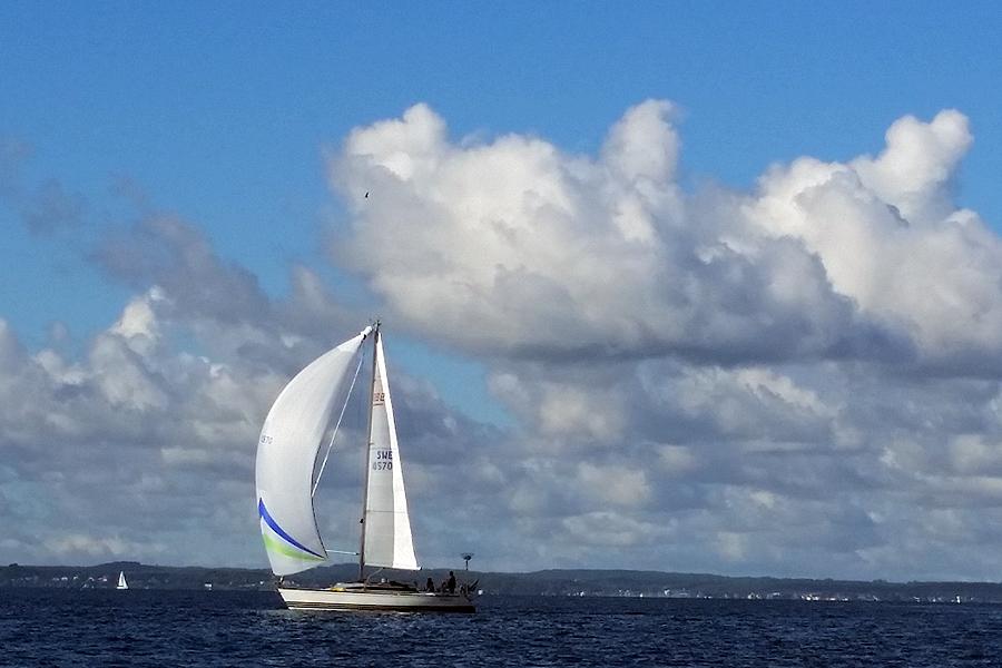 Det råder delade meningar kring behovet av framtida båtplatser för segelbåtar med en bredd över 3 meter.