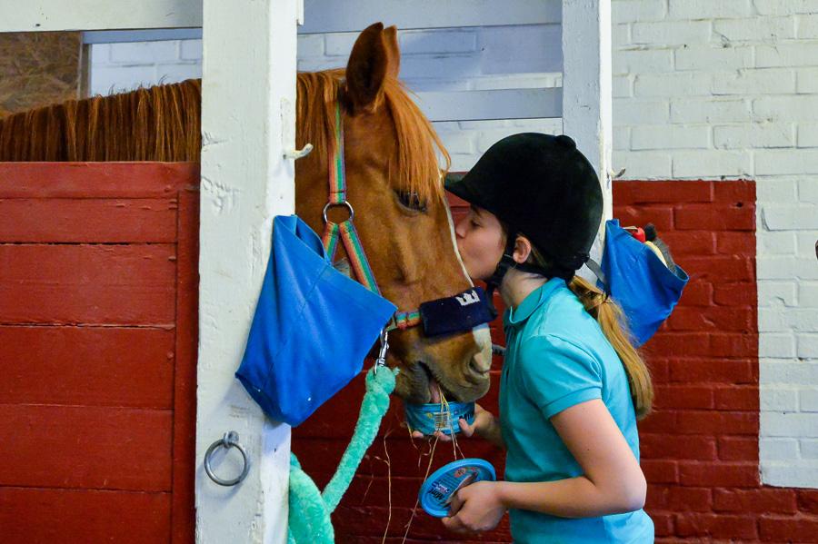 Emma Pantic förbeder sin häst Minigårdens Peter Pan inför strandritten.