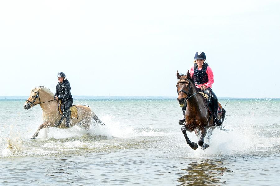 Fanny Sunesson och Julia Peterson galopperar så att vattnet står i kaskader.