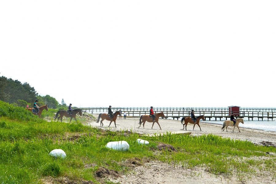 Imponerande syn när ryttarna gör entré på stranden.