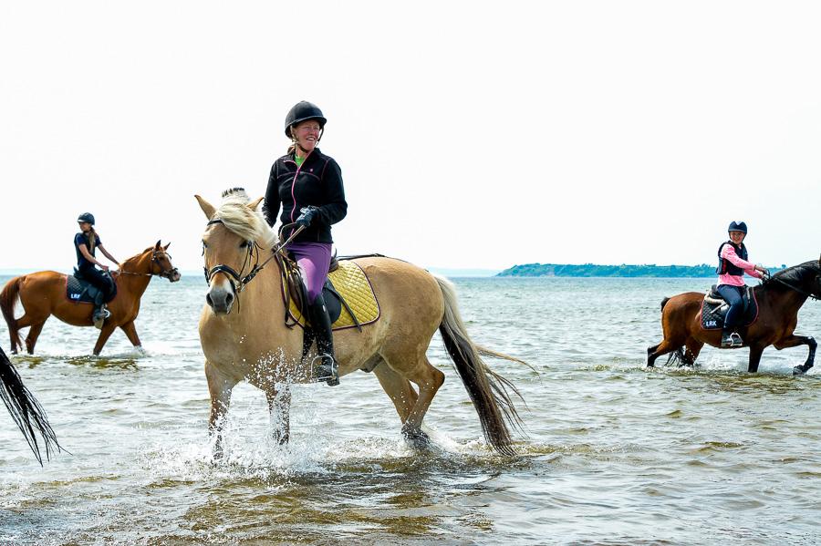 Emelie Warmenius manar på alla ryttare att ge sig ut i vattnet.