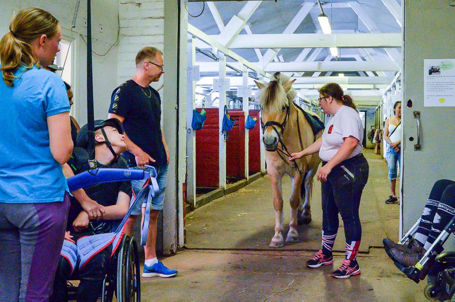 Pontus Frick väntar på hästen Silje som Elizabeth Frey leder fram. Foto: Ulf Bjarke – Foto261.se