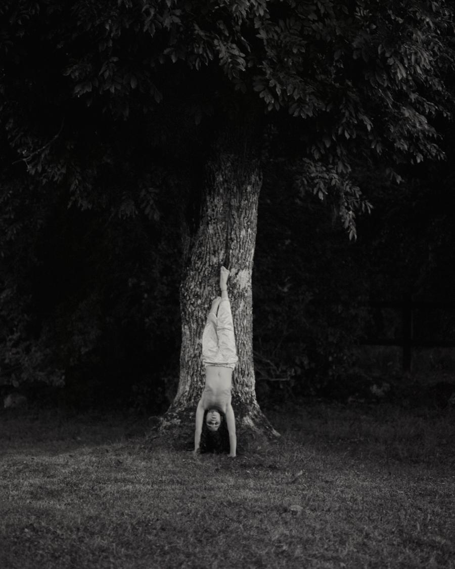 Helene_Schmitz_The-Ash-Tree
