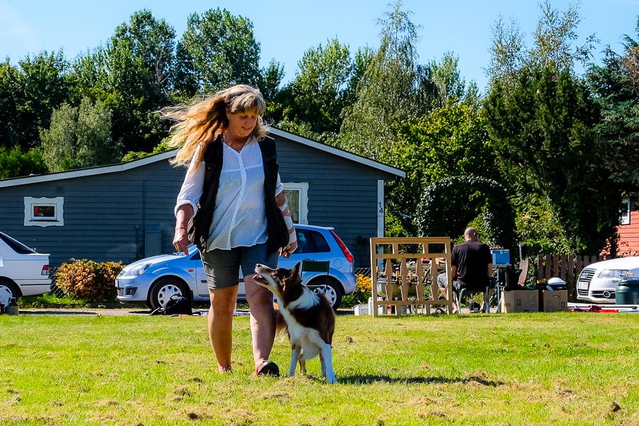 Kitty Tedemark och Ess visade upp lydnad. Foto: Ulf Bjarke – Foto261.se