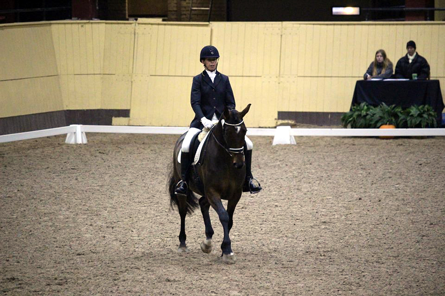 Viarps Petra Ryrstedt på Lucern vid tävlingarna i Flyinge.