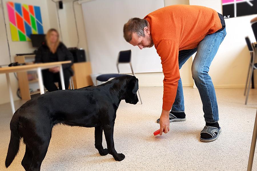Maje stans första pedagoghund
