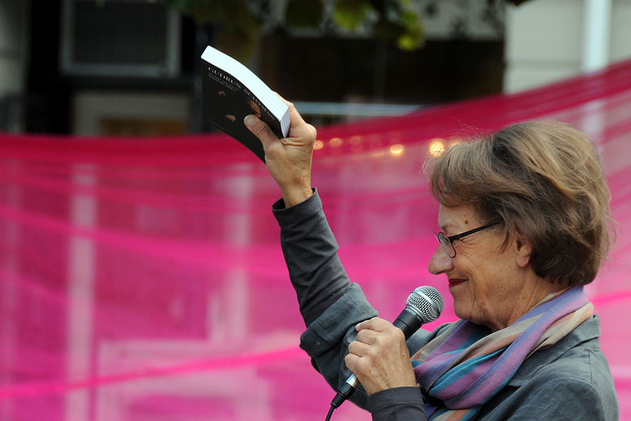 Gudrun Schyman till Slottscaféet