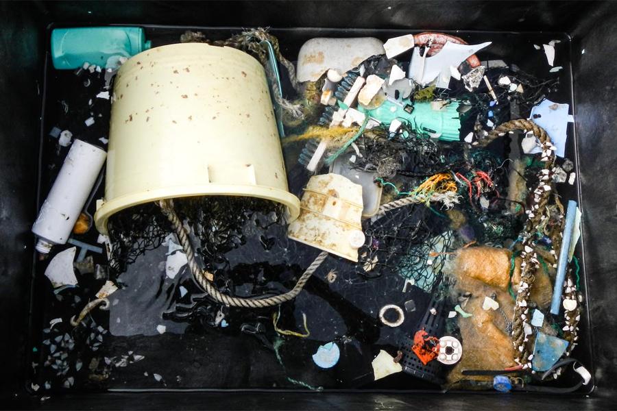 Plastjakt med rekordslakt