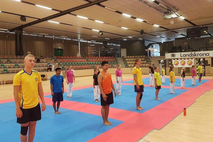 Gratis taekwondoträning i sommar