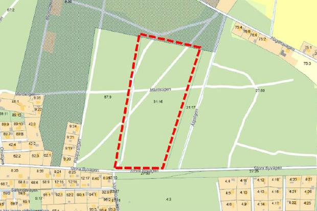 Kommunen vill behålla skog i Saxtorp