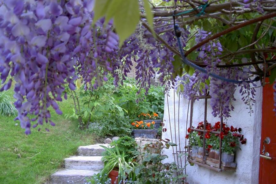 Hvens Trädgårdsintressenter öppnar sina grindar