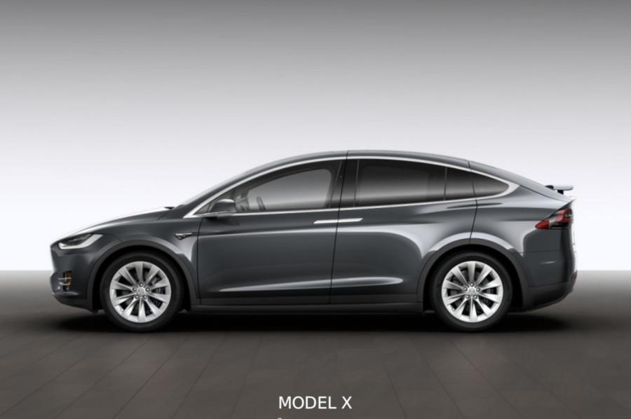 Teslan het i fullmäktige